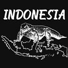 Indonesia Country Map And Komodo Dragon by lo-qua-t