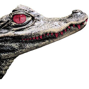 Alligator  by randomarthouse