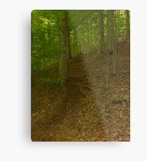 Prince William National Forest 2 Metal Print