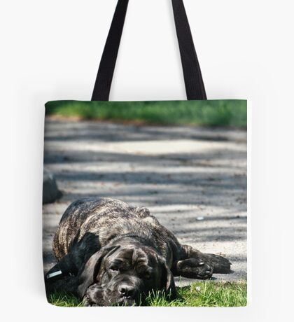 Sleeping Dog Tote Bag