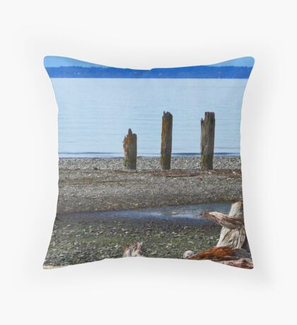 Three For The View Throw Pillow