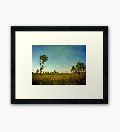 Australiana II Framed Print