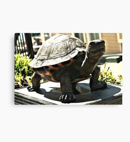 Big Turtle Canvas Print