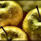 Golden Apples by Sheri Nye