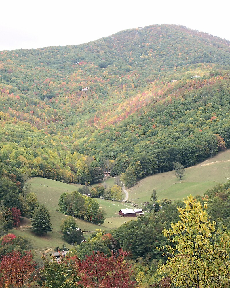 Maggie Valley by Bob Hardy