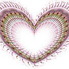 Pink Love Heart by Barbara A Lane