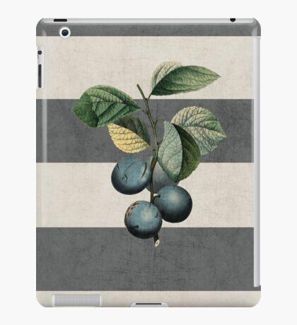botanical stripes - plums iPad Case/Skin