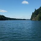 Boating through Fall Creek by Tamara Lindsey