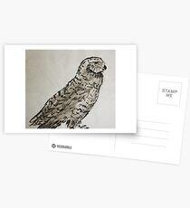 Snow Owl Postcards