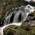 Flowing Fast by Dave Warren