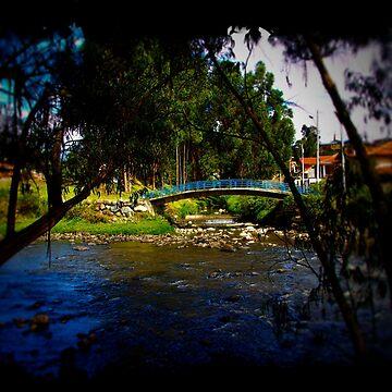 The Beauty Of Cumanda Creek In Cuenca II by alabca