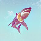 Lemon Shark by Ali Gulec