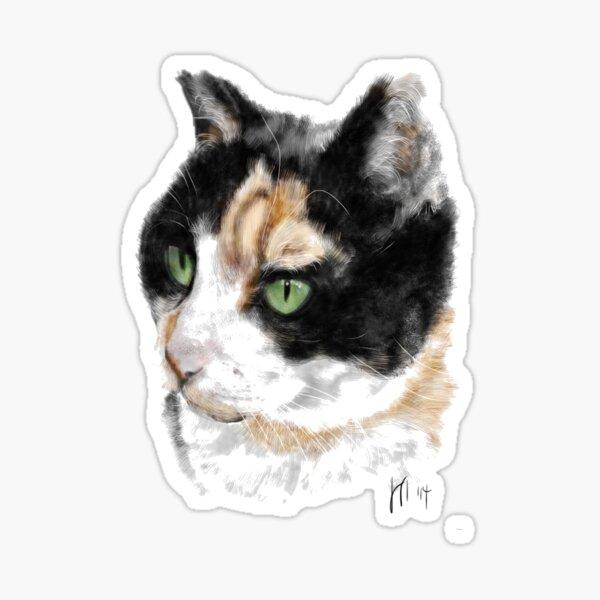Serious Green Eyes Kittie Cat  Sticker