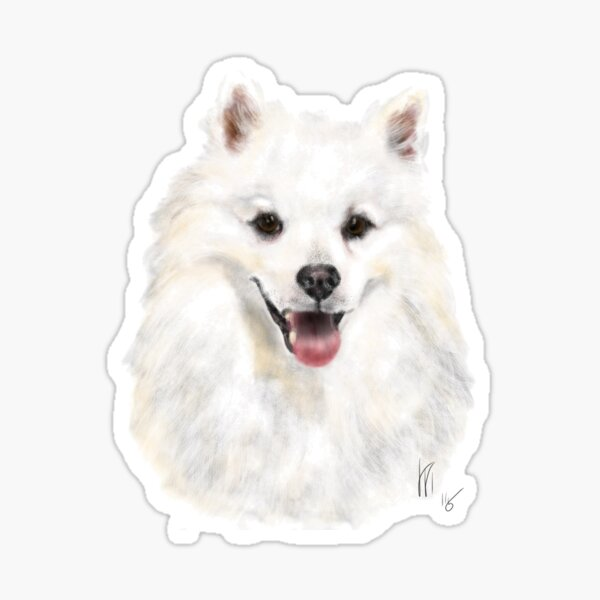 Happy Smiling American Eskimo Dog  Sticker