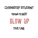 Chemistry Student Trying to Not Blow Up the Lab by Ruthie Spoonemore