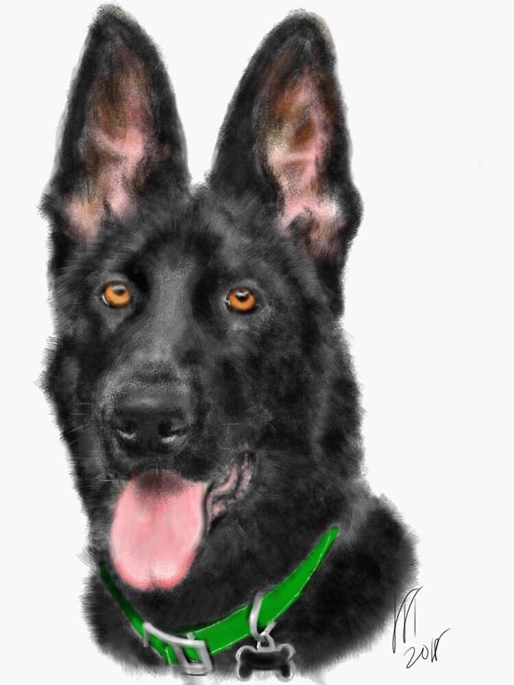 Smiling Black German Shepherd  by LITDigitalArt