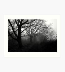 Evocative mists Art Print