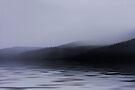 Misty Morning  by Elaine Manley