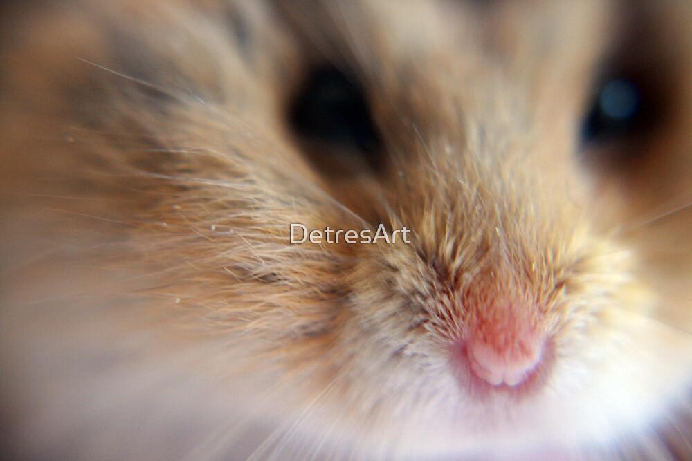 Mickey Close up by DetresArt
