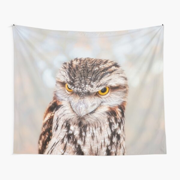 Tawny Frogmouth, Native Animal Rescue Tapestry