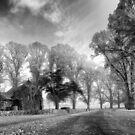 Gostwyck Chapel - BW by Michael Howard