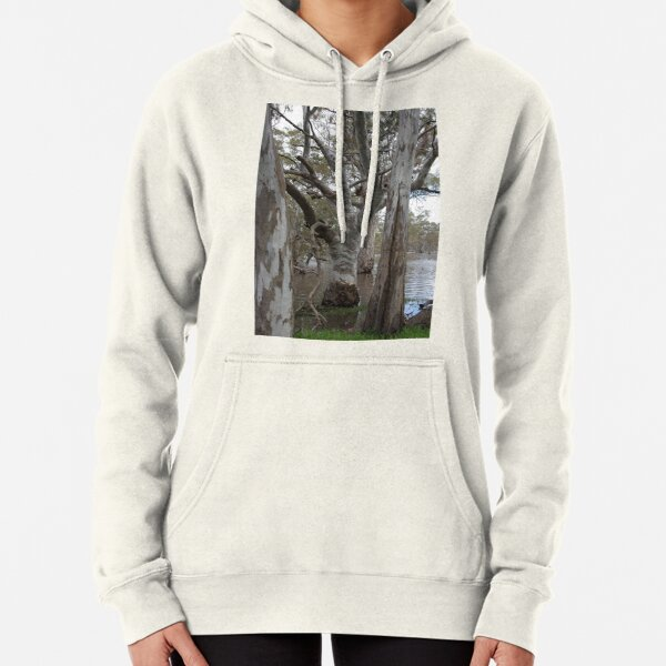 At Poocher Swamp Game Reserve Pullover Hoodie