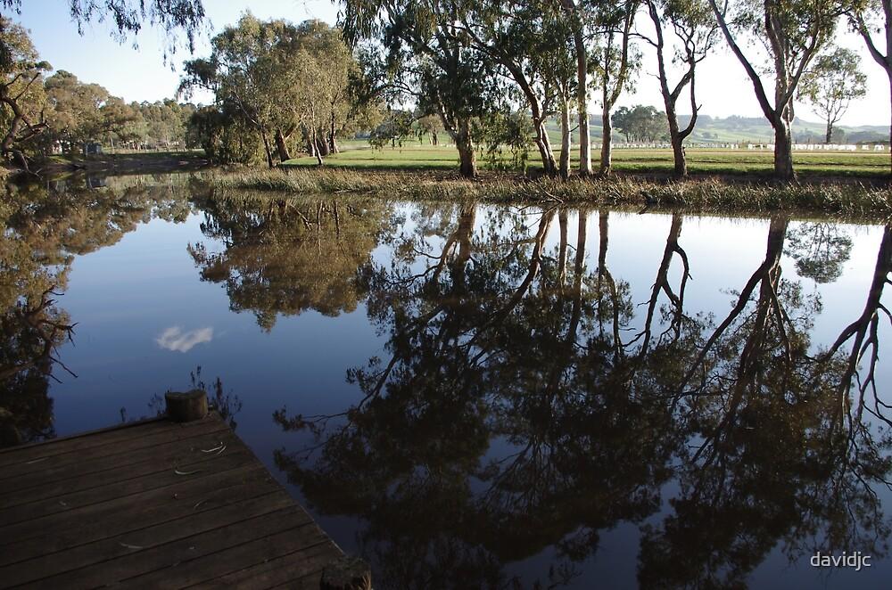 Reflections at Ess Lagoon by davidjc