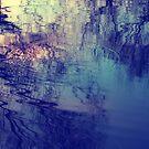 Splash by Angela King-Jones
