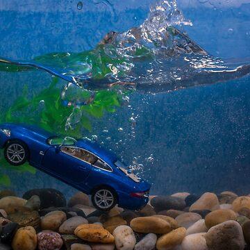 Jaguar XK by AlanOrgan