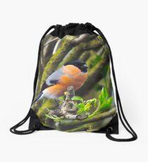 Male bullfinch Drawstring Bag