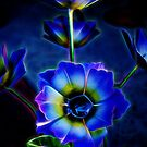 Dark brilliant blue and yellow flower by Michael Moriarty