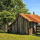 Hill Country Barn by Judy Vincent