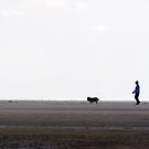 Walking The Dog by Jim Haley