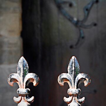 Fleur-de-lys pattern church gate and wooden door beyond, Ireland by buttonpresser