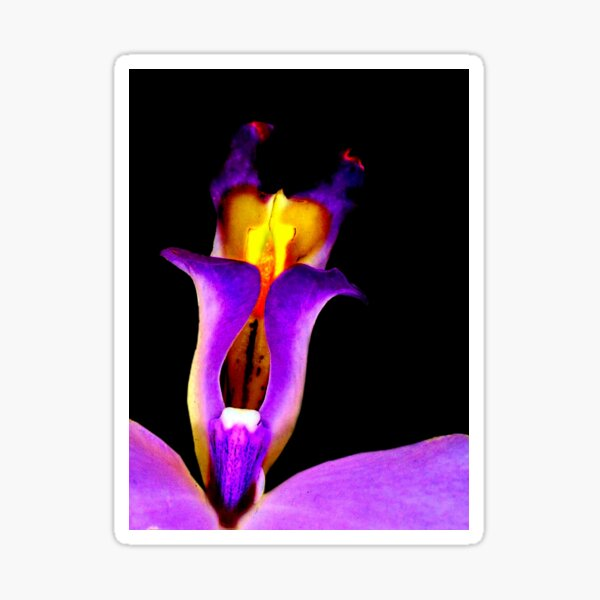 Slightly Horny - Orchid Alien Discovery Sticker