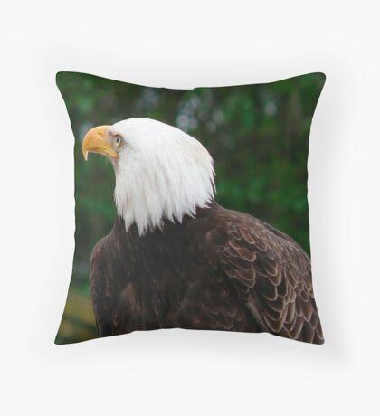 Overhead Watch Throw Pillow