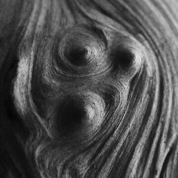 Cosmos Face by Raz by MeyrellesMartin