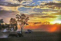 'Farm Scene' by Kat36