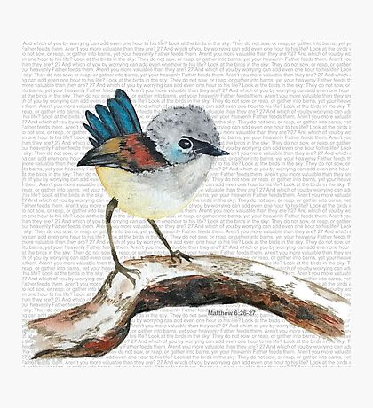 Don't worry, bird watercolor / Matthew 6:26-27 Photographic Print