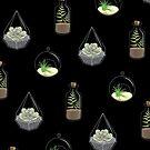 Pflanzen von alxndra