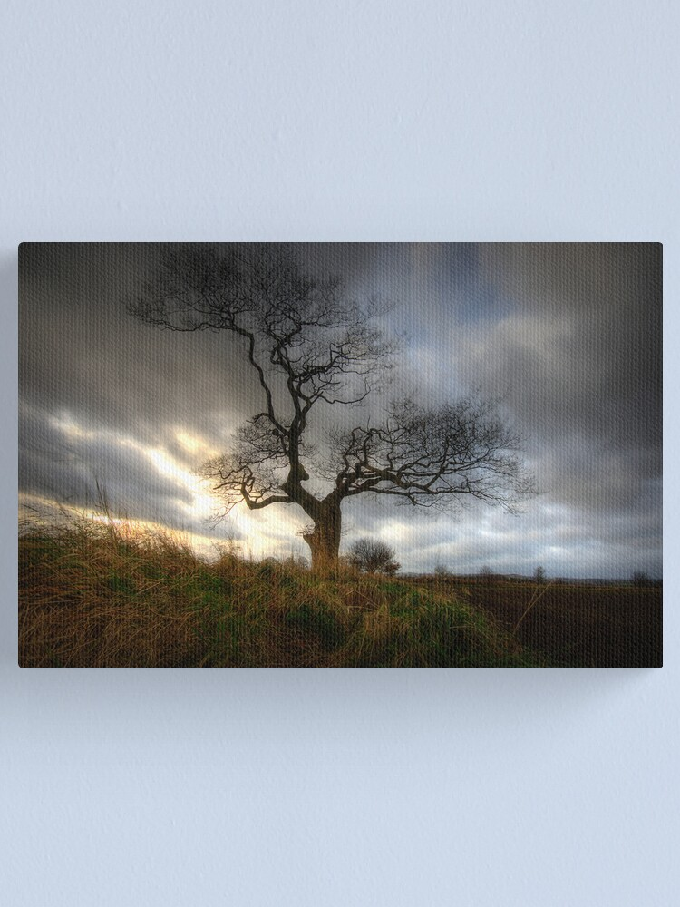 Alternate view of A tree Canvas Print