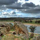 Bethungra Dam by GailD