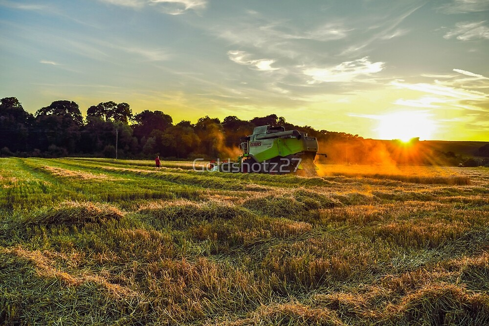 Claas Combine at sunset by Goldshotz27