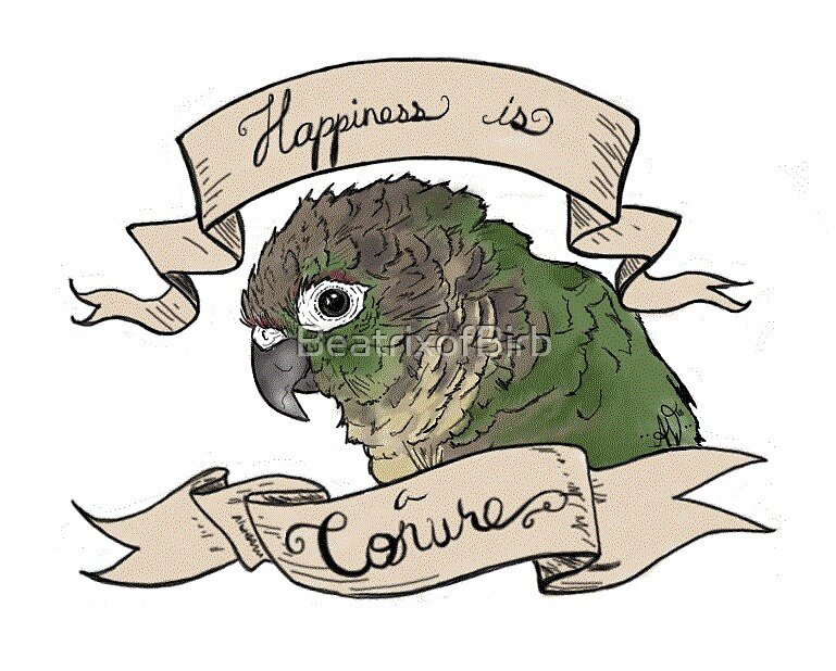 Happiness is a Conure by BeatrixofBirb