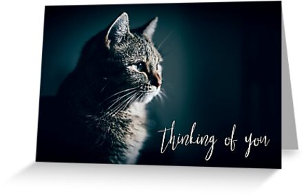 Thinking of You greetings card by QuotableQuotes
