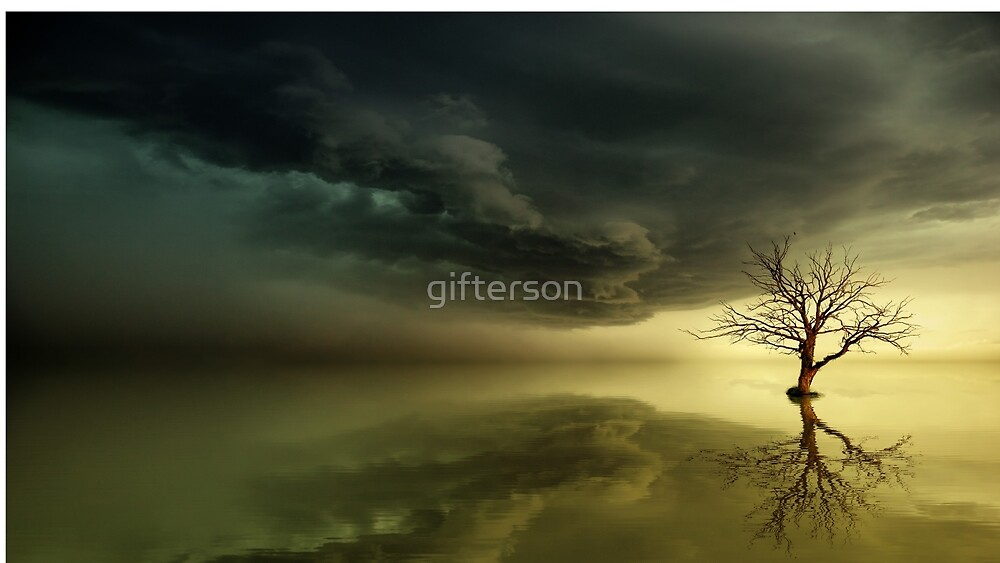 The Lone Tree; Not Lonely by gifterson