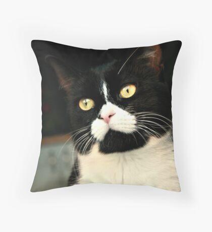 Posing Cat Throw Pillow