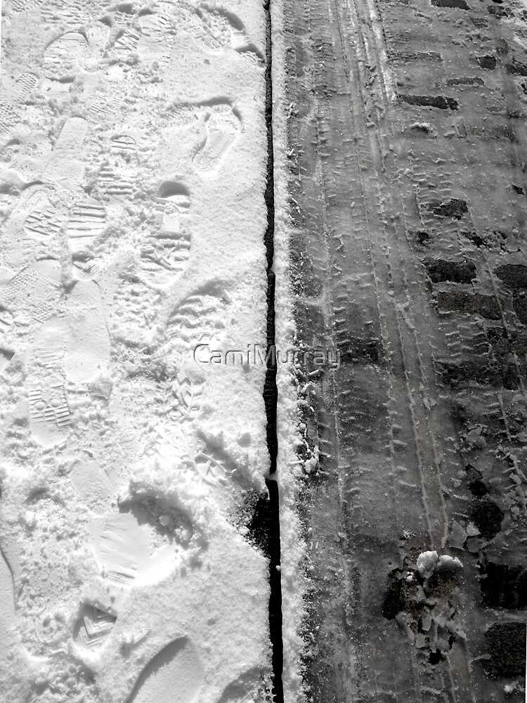 Snow Paths by Camille Murray