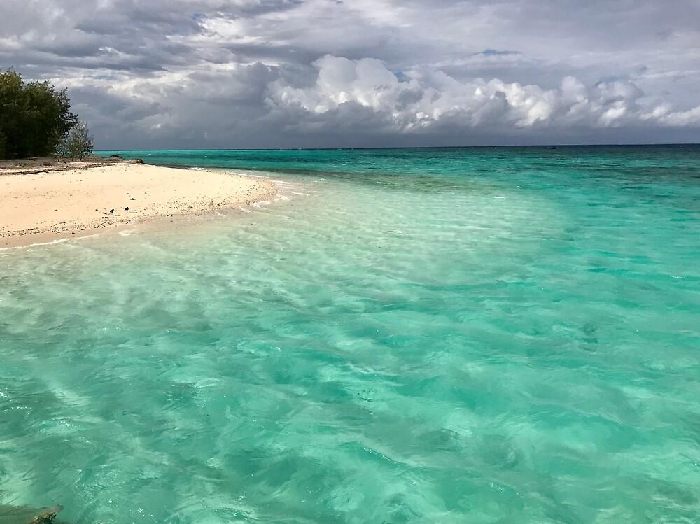 Heron Island Sea by Annie Smit