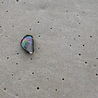 Jewel on the Sand by Kathy Silcock
